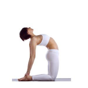 Siła i elastyczność
